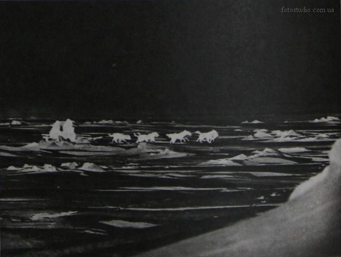 Обыкновенная Арктика